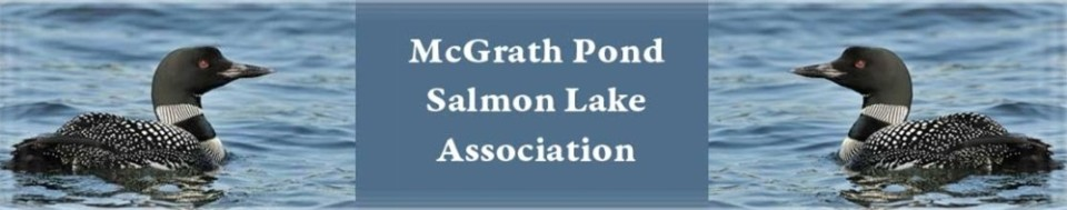 Mcgrath Pond – Salmon Lake Assocation